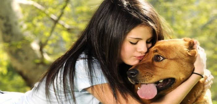 How To Take Care Of Pet Dog In Hindi