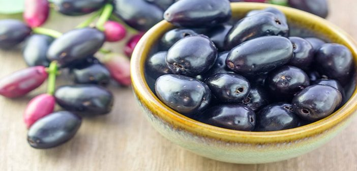 Health and beauty benefits of black plum or jamun seeds