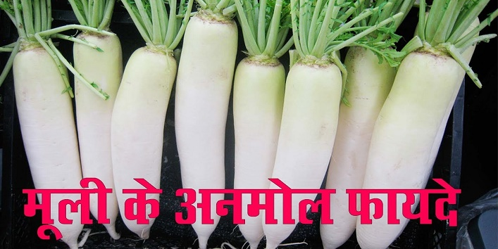 some unknown health benefits of radish cover