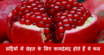 Fruits-that-are-good-for-health-during-winter-cover